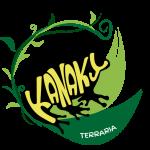 Kanaky Terraria